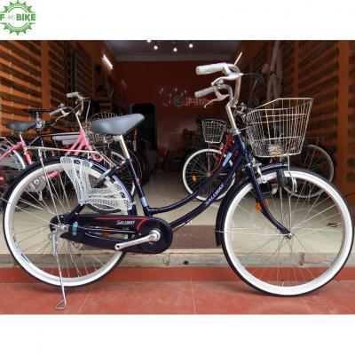 Xe Đạp Mini Việt Nam Sallway 02